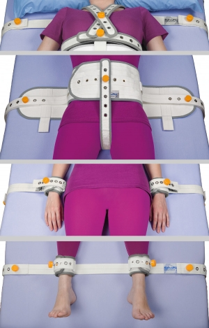 Harness with thorax band (FR)